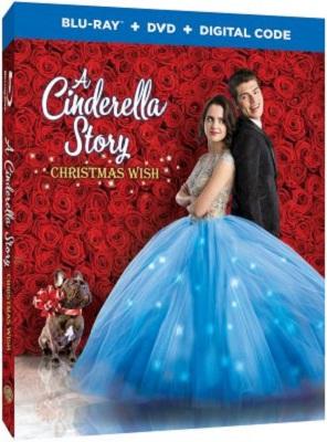 A Cinderella Story: Christmas Wish (2019).avi BDRiP XviD AC3 - iTA